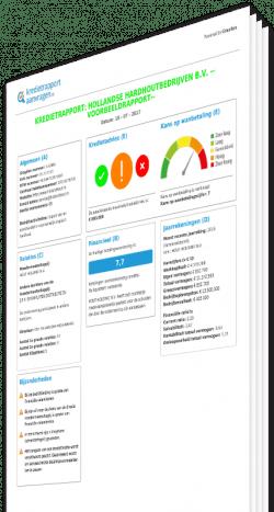 Kredietrapport bedrijven Nederland, Graydon